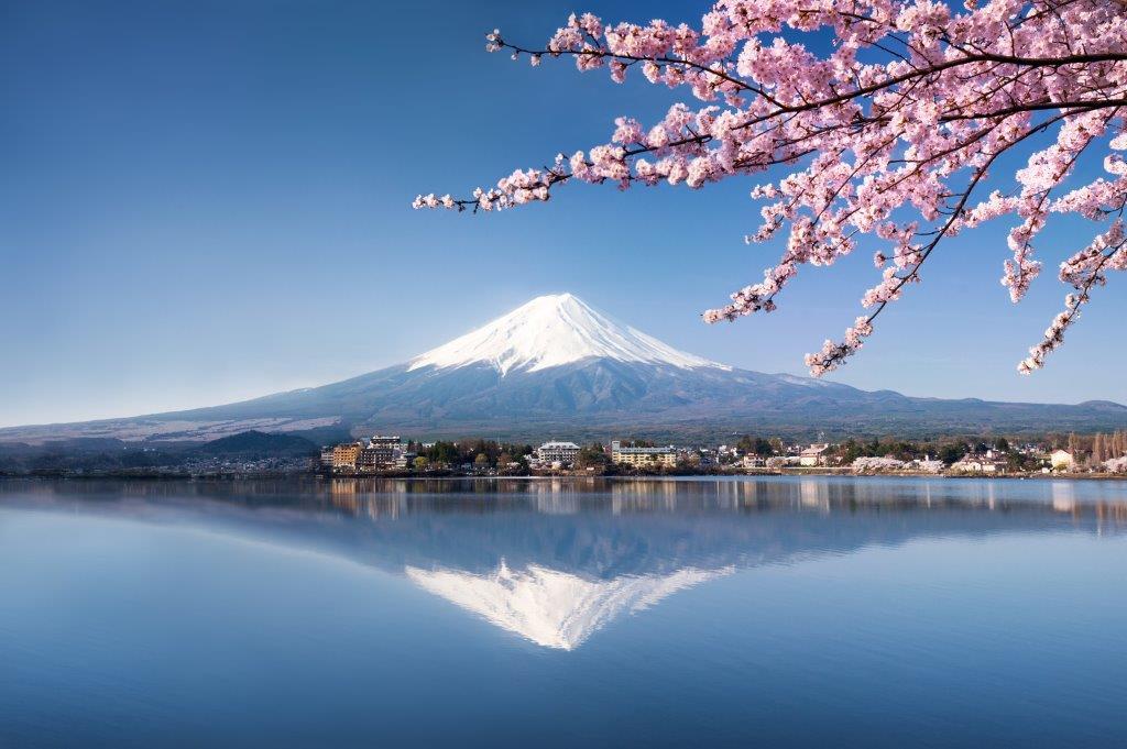 Le meilleur du Japon