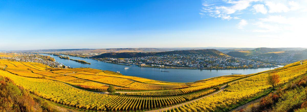 Croisière sur le Rhin Romantique, Mayence - Coblence - Rudesheim, Région Sud-Ouest