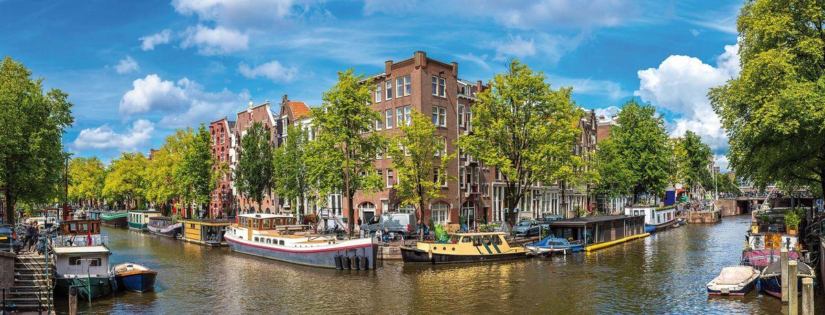 HOLLANDE - Au royaume des fleurs