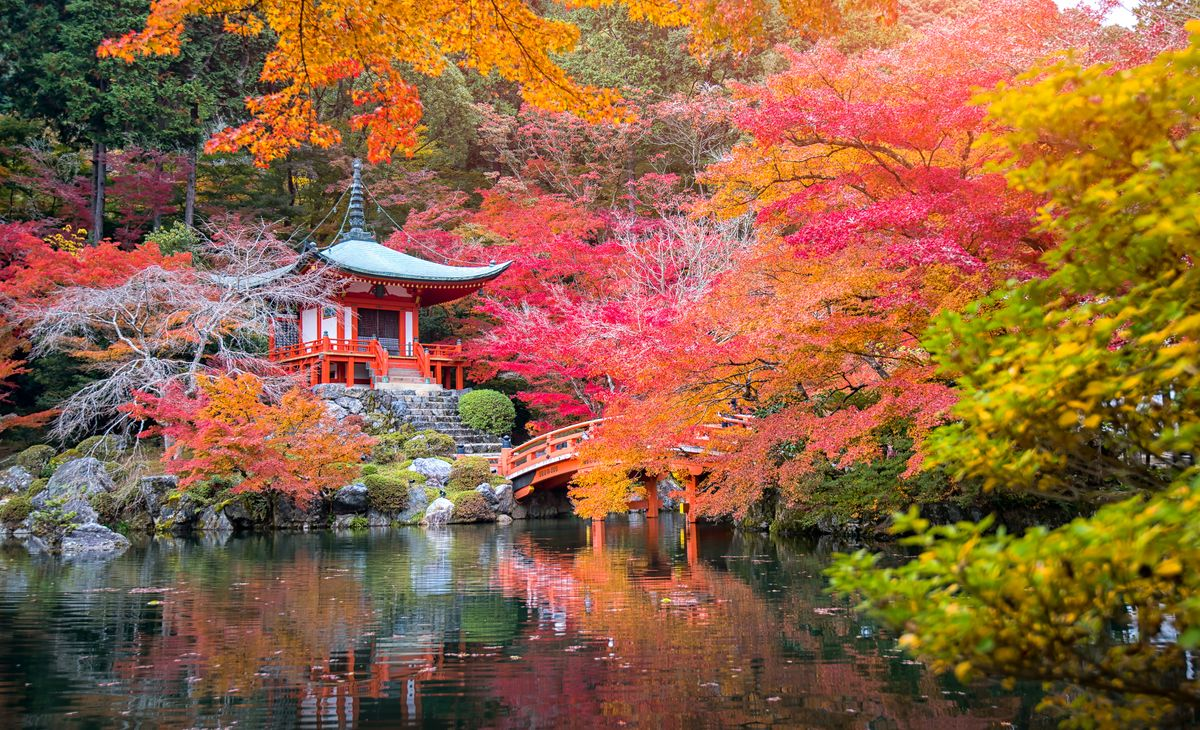 Japon Authentique
