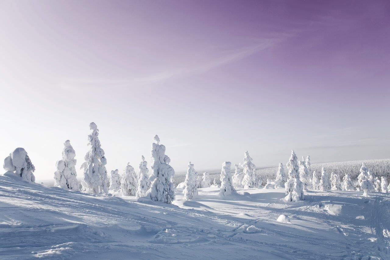 Aventure en Laponie