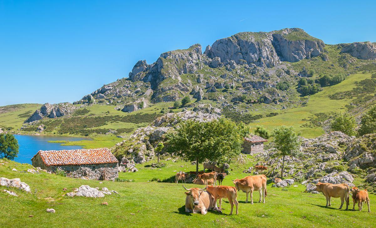 Les Asturies, Région Sud-Ouest