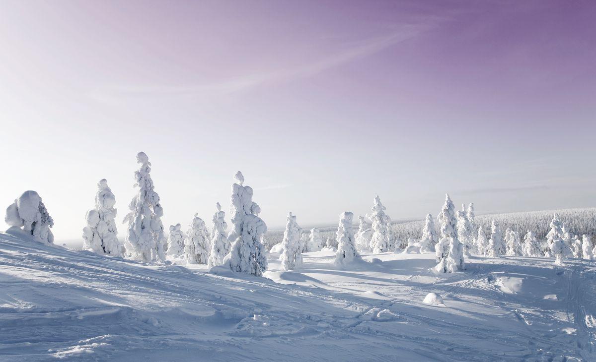 Séjour multi-activités en Laponie