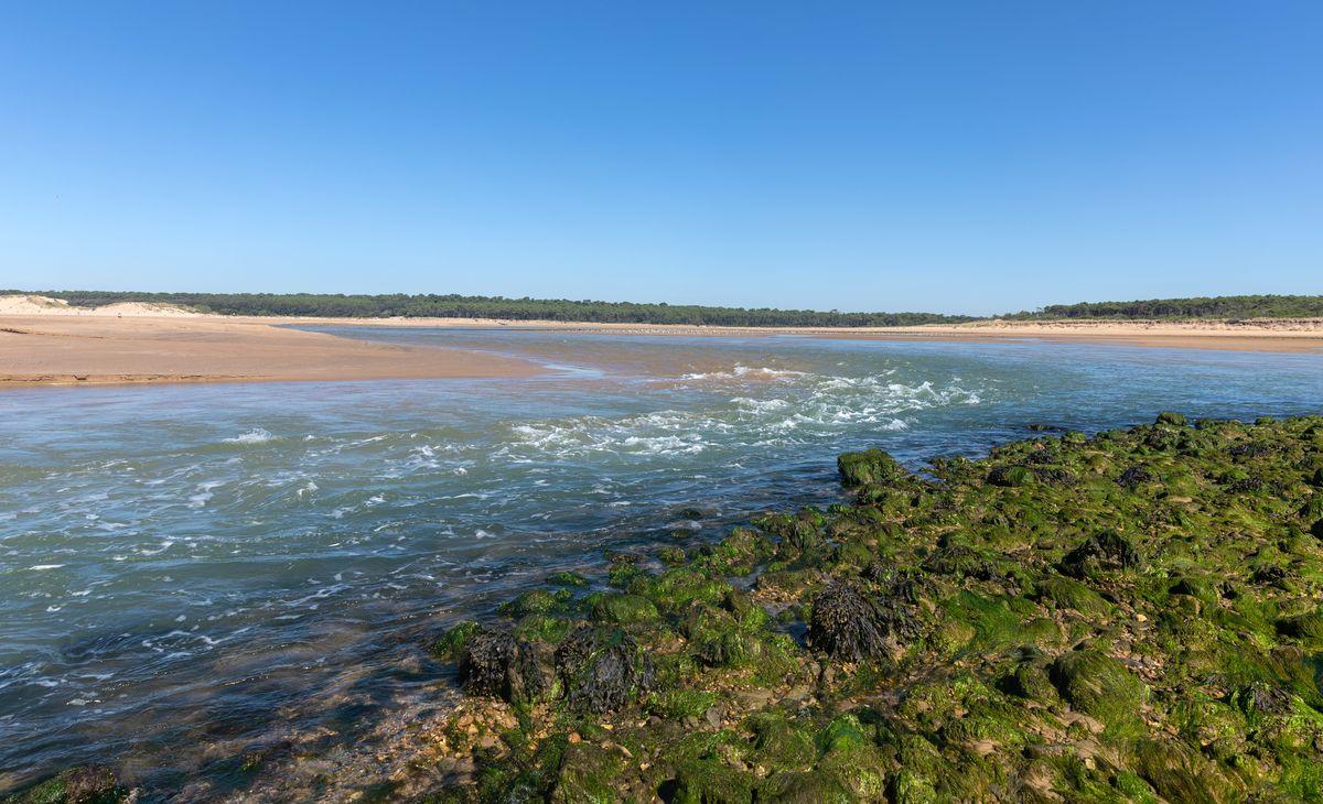 Vendée Atlantique, Région Sud-Ouest