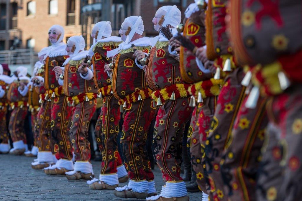 Les plus beaux carnavals flamands, Région Sud-Ouest