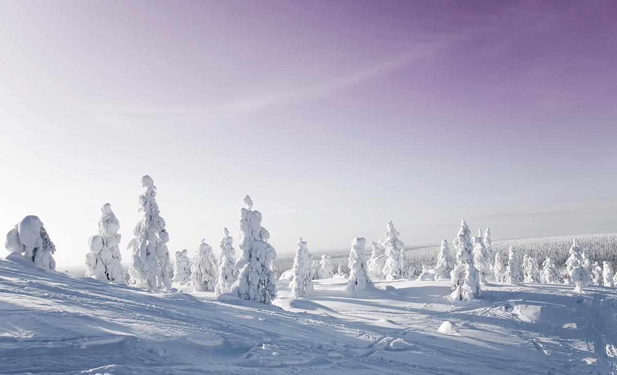 Laponie : Igloo et aurores boréales