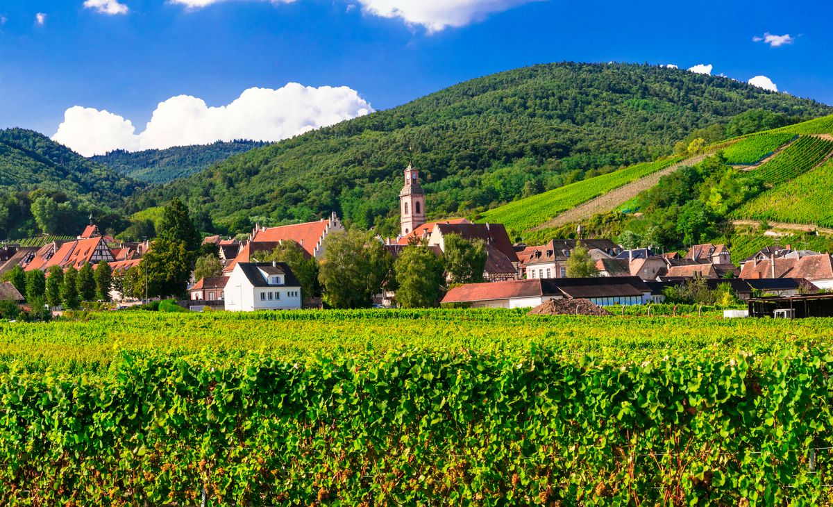 Alsace et Vosges : De routes célèbres en cités remarquables, Région Grand-Ouest & Paris