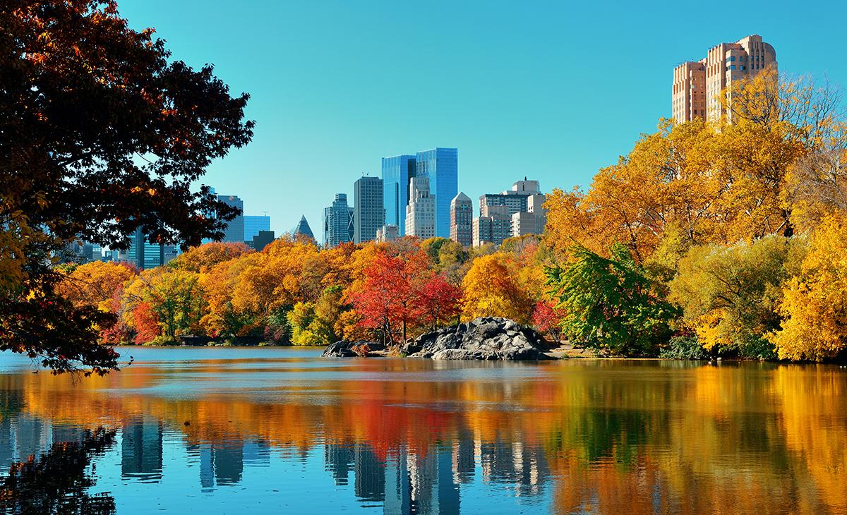 Escapade à New York avec extension à Brooklynn