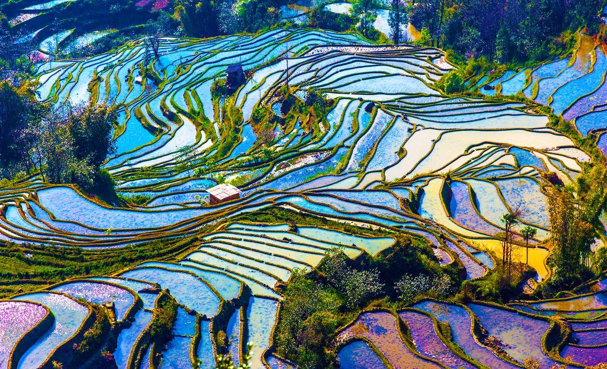 Au coeur du Yunnan