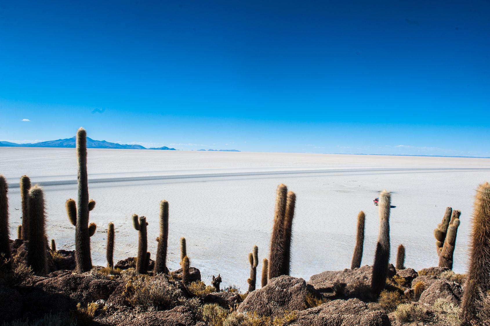 Circuit - Bolivie et Pérou  - Voyage au coeur des Andes